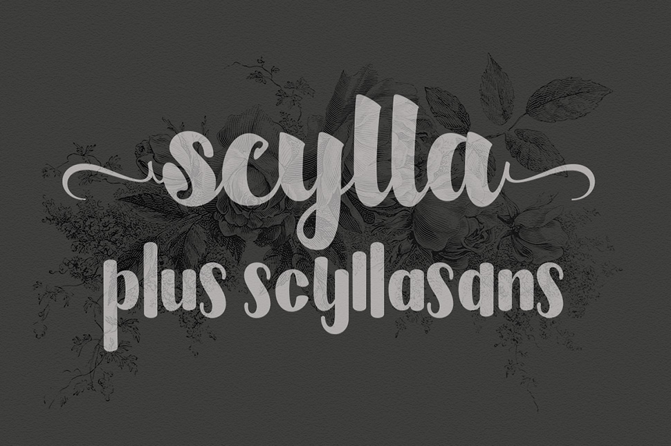 Scylla The First Font Also Features Ligatures Swirls And Special Characters I Personally Really Like These Clean Bold Fonts Think They Can Come In